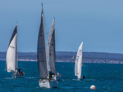 37-All eyes on the Buoy - Karen Miels - 5 Points